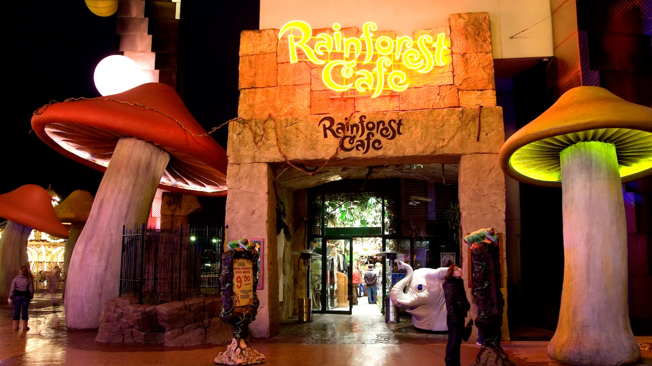 Boutique Rainforest Café
